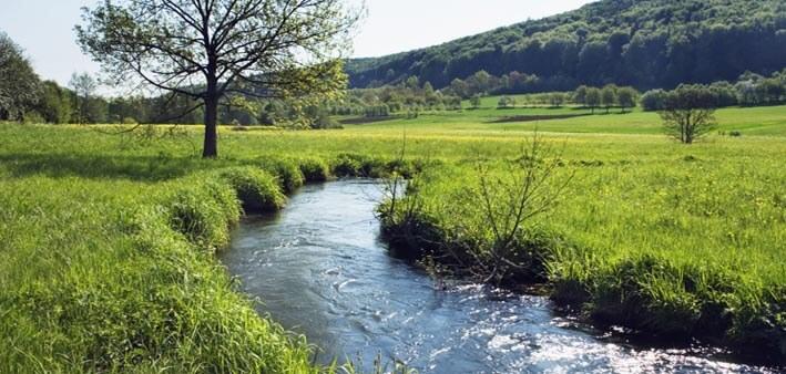 soñar con rio